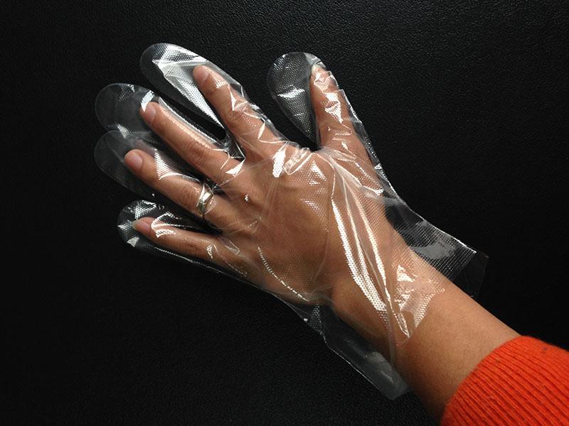 poly glove - PE-GLOVE